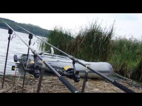 Carp Fishing Palotás