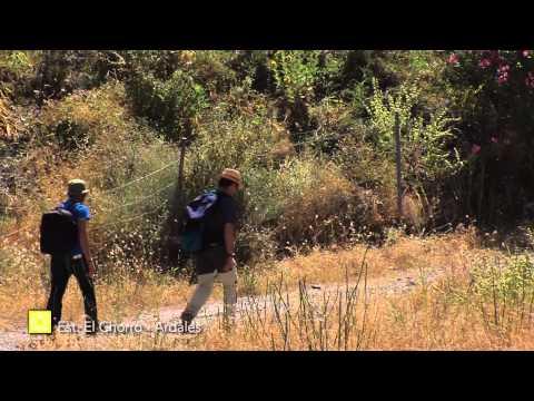 Der Große Wanderweg Málagas. Etappe 21: Estación de El Chorro (Álora)– Ardales (Deutsch)