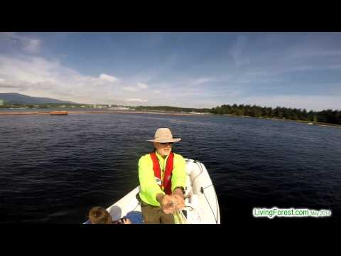 Nanaimo Harbour Boat Tour- GoPro Stick Cam Selfie