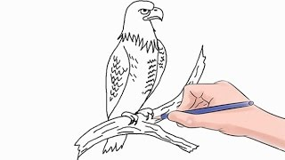 Easy step by step tutorial on how to draw a falcon, pause the video at every step to follow the steps carefully. Enjoy ;)- Facebook: https://www.facebook.com/HowtoDrawSimply