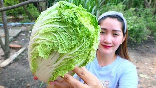 Video Yummy Chinese Cabbage Rolling Shrimp - Rolling Cooking - Cooking With Sros MP3, 3GP, MP4, WEBM, AVI, FLV Mei 2019