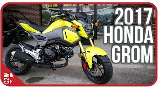 8. 2017 Honda Grom | First Ride