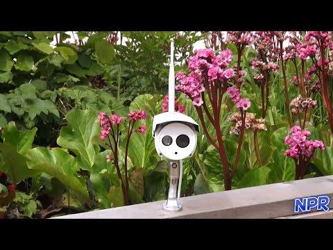 Foscam FI9803P Outdoor Security Camera Review