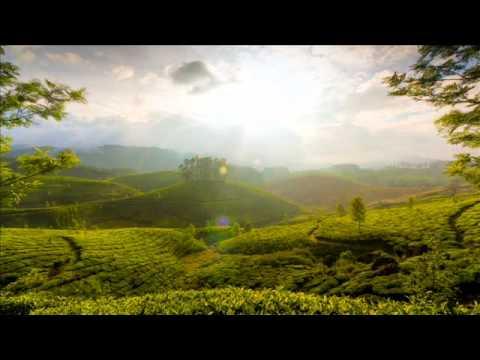 Stan Kolev & Dinka - Luminal (Dinka Spring Vibes Mix)