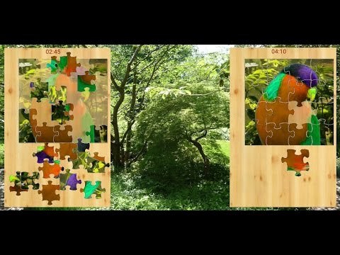 Video of bird jigsaw puzzle