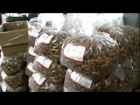 Pecans Going Global - Berdoll Pecan Farm