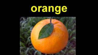 Fruit ~ Learn  English Vocabulary  TESOL