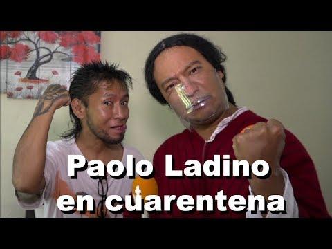Mashi - Paolo Ladino