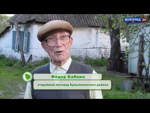 Кумылженский район. Выпуск от 11.05.2017