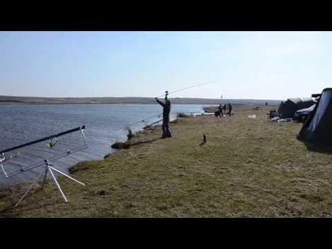 Годування, тест сподових палок 2015, відкриття сезону.