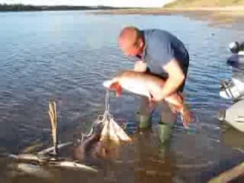 рыбалка в районе гарей