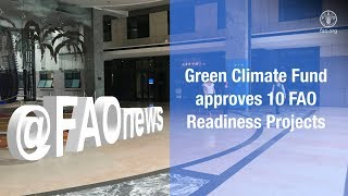 FAO helps countries lay the groundwork for climate-resilient futures