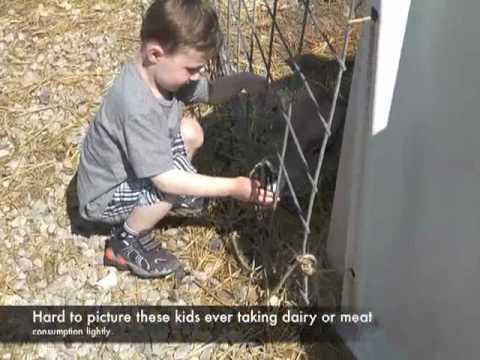 Local Dairy Farm, Support Local Farm with Kids, Organic Milk
