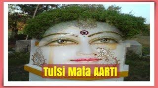 जय तुलसी माता । Arti Tulsi Maiya | Jai Tulsi Mata |  Arti Tulsi Maiya | Jai Tulsi Mata Tulsi Aarti