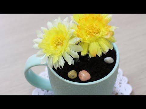 Flower Pot Tiramisu - MIGO