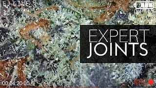 EXPERT JOINTS LIVE -  Feb 16/17 by Urban Grower