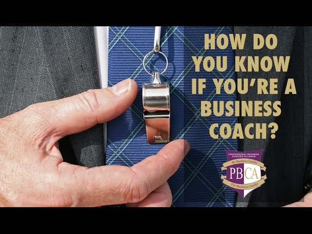 How to Know If You're a Business Coach