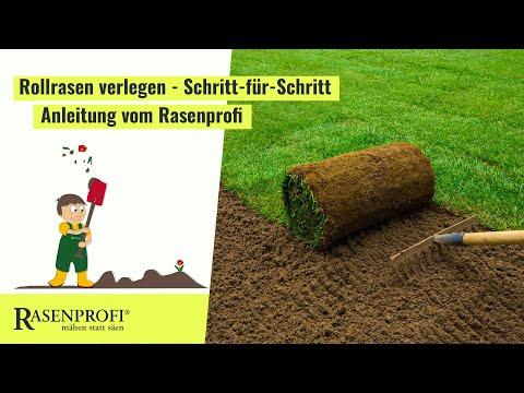 Rollrasen verlegen - Rasenprofi.de