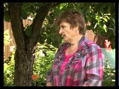 Сад и огород клематисы 1
