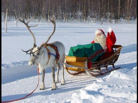 Reno & Papá Noel – Los secretos de renos de Santa Claus – Laponia Finlandia Rovaniemi
