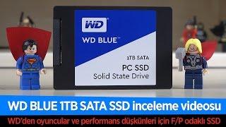 bD4YXS9GP2A