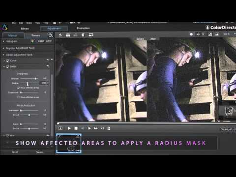 ColorDirector 3 - Improving Videos Shot in Poor Lighting