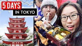 Video 5 DAYS IN TOKYO ♦ Japan Travel Vlog ft. Heyitsfeiii MP3, 3GP, MP4, WEBM, AVI, FLV September 2018