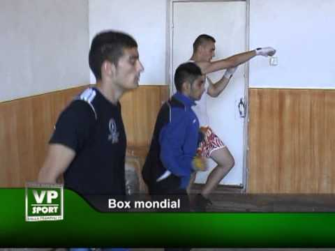 Box mondial