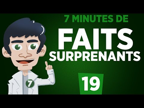 7 MINUTES DE FAITS SURPRENANTS #19