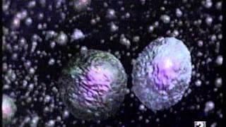 Download Lagu la gripe y el sistema inmunitario Mp3
