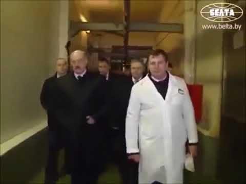Неожиданный визит Лукашенко: всех виновных в камеру