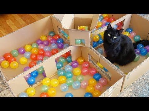 tante-palline-colorate
