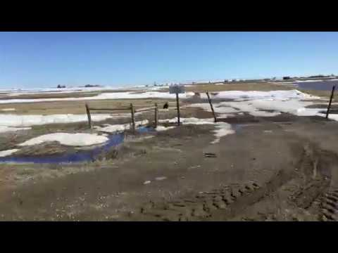 Overland flooding in southern Alberta
