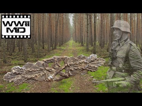 Wwii Metal Detecting - German Waffen Ss - Traces Of War On The Eastern Front