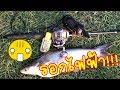 foto เอารอกไฟฟ้าไปตกปลาสวาย by fishingEZ Borwap
