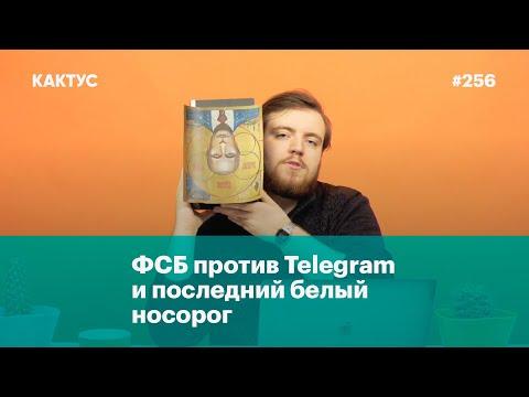 ФСБ против Telegram и последний белый носорог (видео)