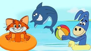 Kedi ve Papağancık - DerlemeYüzme Dersi ve Havuz ve Yunus ...