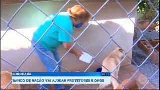 Sorocaba: Projeto arrecada alimentos para pets