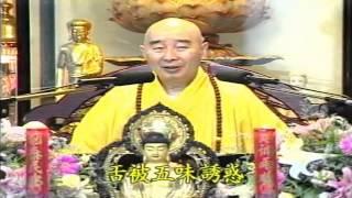 Kinh Vô Lượng Thọ Huyền Nghĩa tập 07 - Pháp Sư Tịnh Không