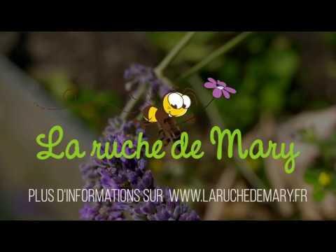 Activité à découvrir avec La ruche de Mary