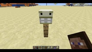 Custom Item Names and Skulls in Minecraft Snapshot 12w40b
