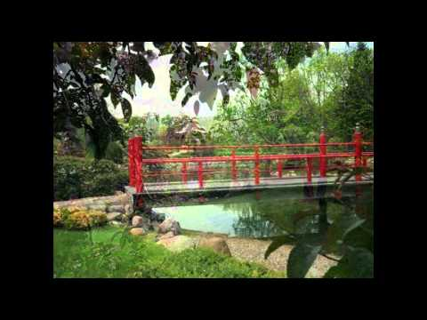 normandales japanese garden