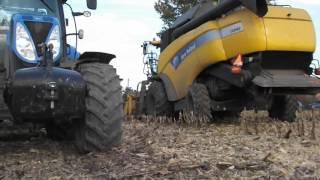 Video Koszenie poletek kukurydzy firmy Pioneer w GR.Matuszek MP3, 3GP, MP4, WEBM, AVI, FLV November 2017