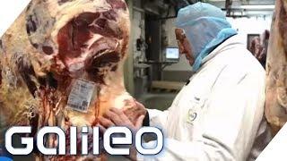 Video Dry Aged Beef: Das Fleisch für Steakliebhaber | Galileo | ProSieben MP3, 3GP, MP4, WEBM, AVI, FLV Agustus 2019