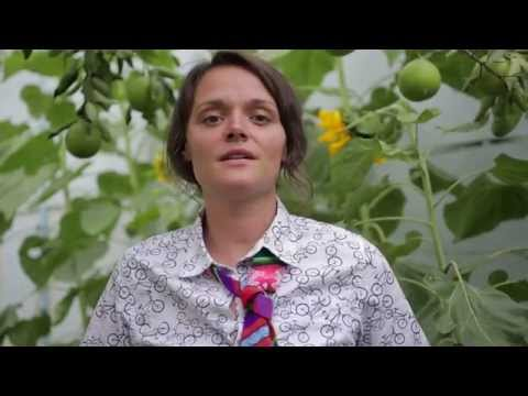 How is living at an NGO? Video testimony from Sustainable Bolivia