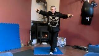 """Weirdest Martial Art? """"Snake Oil Style"""" Russian Kung Fu"""