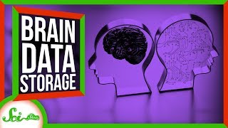 How Much Data Can Our Brains Store? by  SciShow