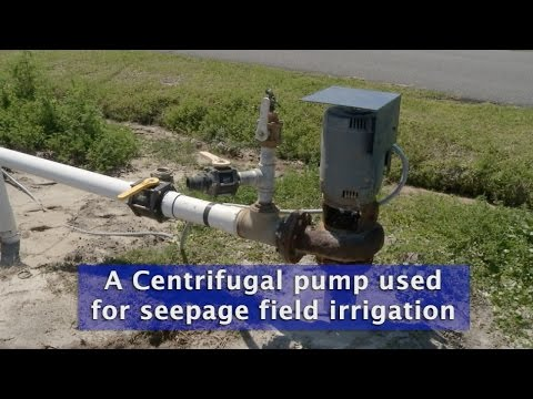 Centrifugal Pump for Field Crop Irrigation