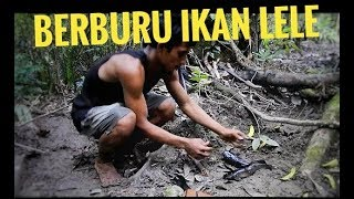 Download Video Mancing ikan lele hutan di rawa mentawai-dapat lele raksasa || 8 Juni 2018 MP3 3GP MP4