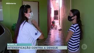 Marília passa por epidemia de dengue